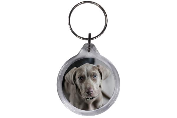 ResKey Schlüsselanhänger rund Hund Labrador beidseitig bedruckt