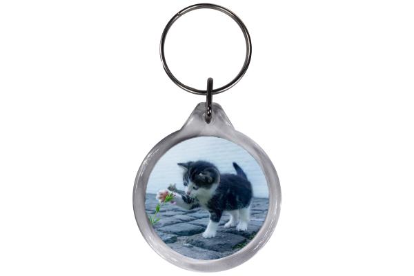 ResKey Schlüsselanhänger rund Katze Babykatze beidseitig bedruckt