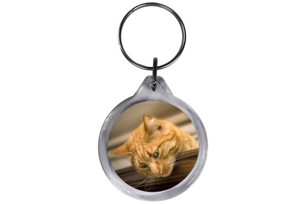 ResKey Schlüsselanhänger rund Katze hell Braun beidseitig bedruckt